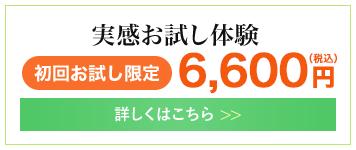 実感お試し体験 6000円